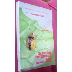 Coléoptères Chrysomeliadae....